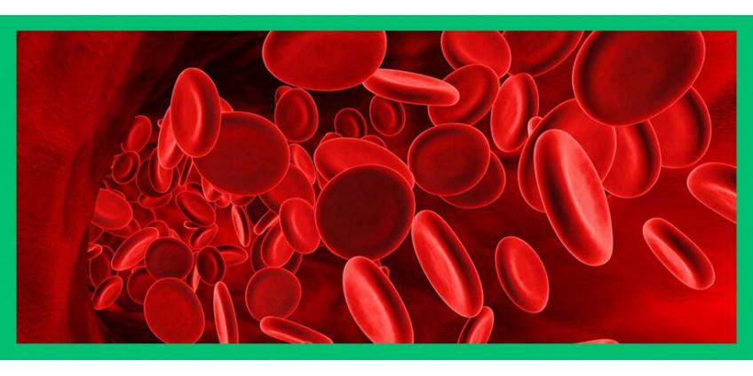 Бета глюкан & холестерин: кто сильнее?